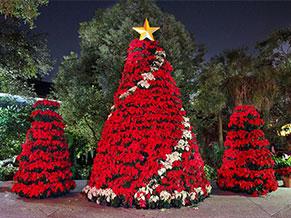 елки из цветов
