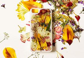 Лепестки цветов на телефоне