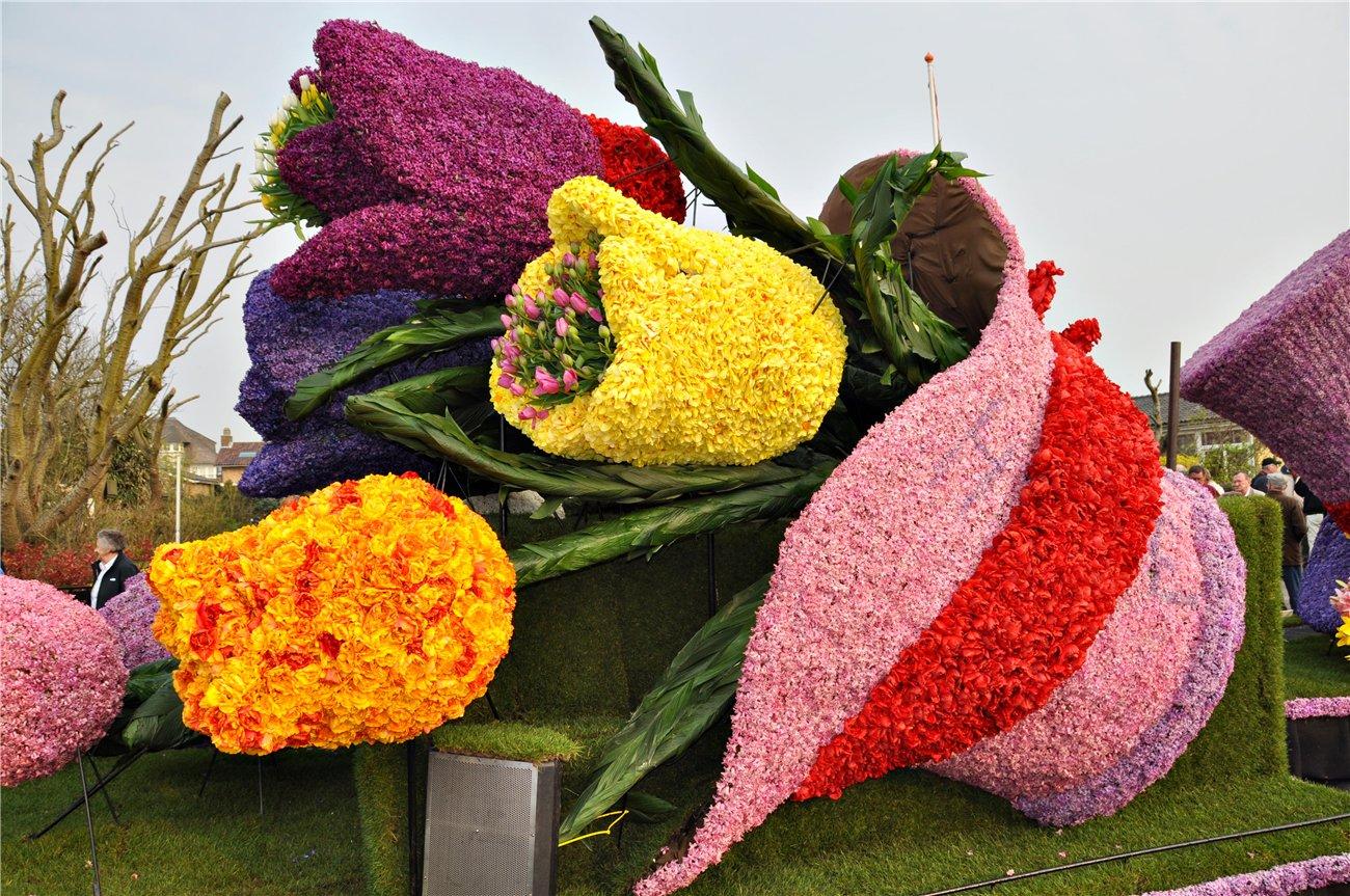 Цветочные фестивали мира