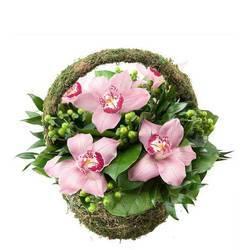 утонченная композиция из орхидей в зелени.jpeg
