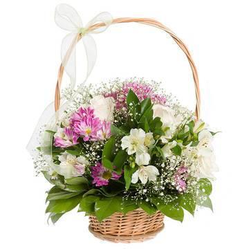 чарующие живые цветы хризантем.jpeg