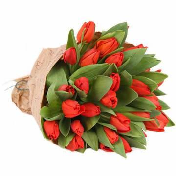 Фото букета красных тюльпанов в бумаге