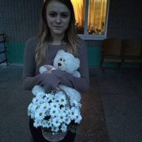 Девушка с корзинкой ромашек и мишкой - фото