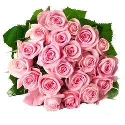 кремово-розовые розочки.jpeg