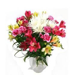 холодная красота гордых цветов.jpeg