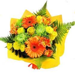 лучезарные цветы в папоротнике.jpeg