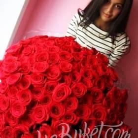 Роскошный букет красных роз для именинницы  - фото