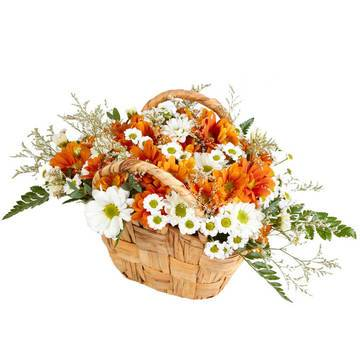 Корзина свежих хризантем
