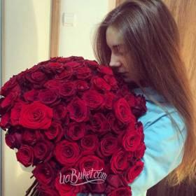 Девушка с красными розами сорта Гран При - фото