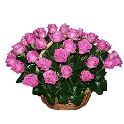 Розали - пунцовый жемчуг прелестных бутонов.jpeg