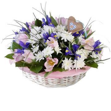 альпийские травы и цветы для вас.jpeg