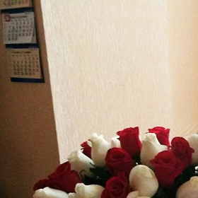 Получательница с букетом из красных и белых роз - фото