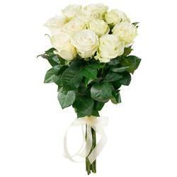 высокие свежие розы.jpeg
