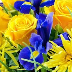 осенние прощальные цветы.jpeg