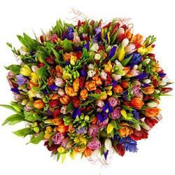 цветы с весенней поляны.jpeg