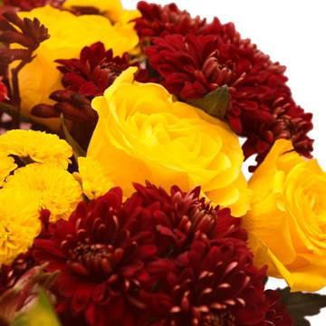 горячие розы и горькие хризантемы.jpeg