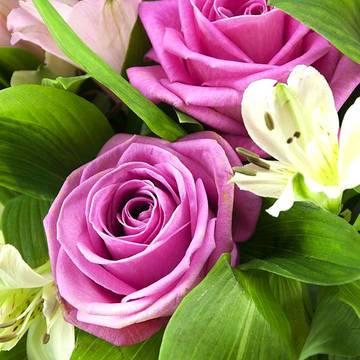 пурпурные лепестки роз и альстромерия.jpeg
