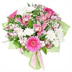 сладкий розовый запах цветов орхидей.jpeg