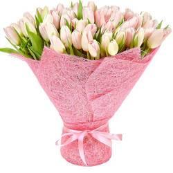 поляна роскошных жемчужин тюльпанов.jpeg