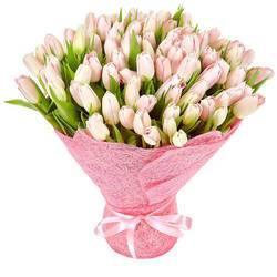 нежнейшие бутоны тюльпанов.jpeg