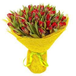 плотный букет красных тюльпанов.jpeg