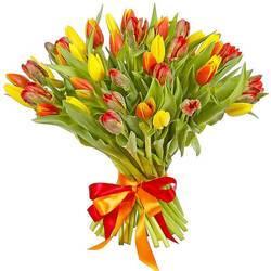 плотные бутоны и крепкие стебли тюльпанов.jpeg