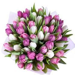 цветной микс из тюльпанов.jpeg