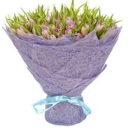 редчайшие сиреневые тюльпаны.jpeg