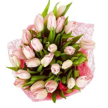 идеальные тюльпаны в букете.jpeg