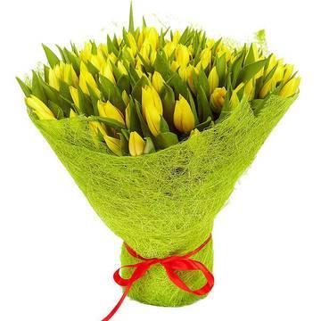 солнечная поляна желтых тюльпанов.jpeg