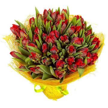 экстравагантные алые тюльпаны.jpeg
