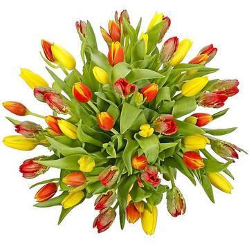 теплые оттенки цветочных лепестков.jpeg