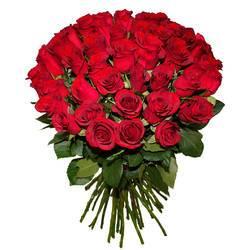 темно-красные розы в самом лучшем букете.jpeg