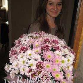 Хризантемы для любимой племянницы - фото