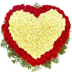 бело красные розы и папоротник в виде сердце.jpeg