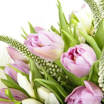 светлый пурпур в букете тюльпанов.jpeg