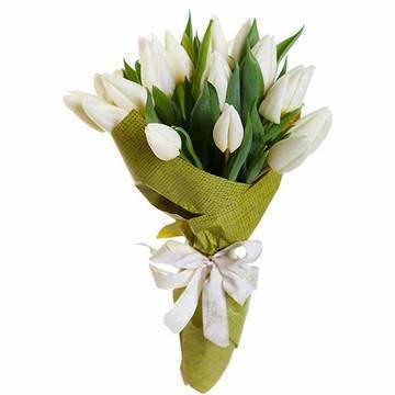 tulip_5.jpeg