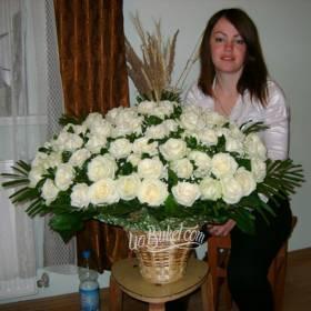 Девушка с корзиной белых роз - фото