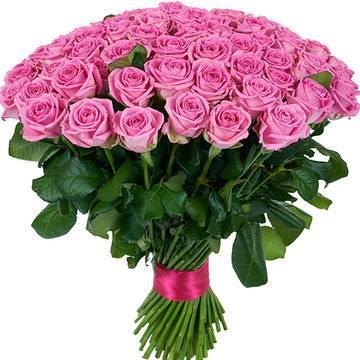 101_roza_pink.jpeg