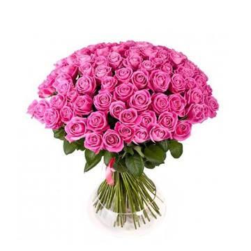 пунцовые розы искрящиеся на солнце.jpeg