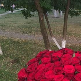 Девушка с огромным букетом красных украинских роз  - фото