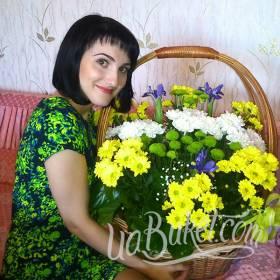 Корзина разноцветных хризантем для именинницы - фото