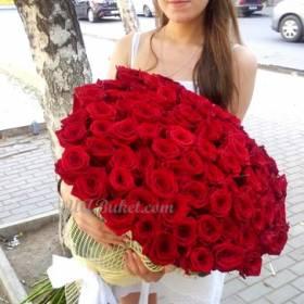 Девушка держит в руках красные розы - фото