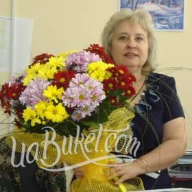 Букет разноцветных хризантем  для получательницы - фото