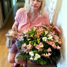 Женщина с корзиной альстромерии - фото