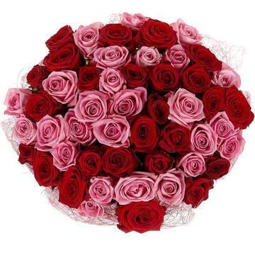 модное сочетание красных роз.jpeg