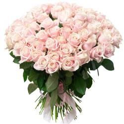 pink_101_roses_.jpeg