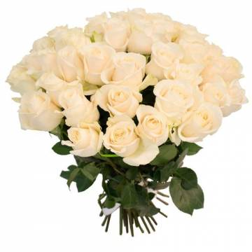 white_roses_1.jpeg