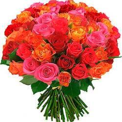 огненно-красные бутоны роз.jpeg