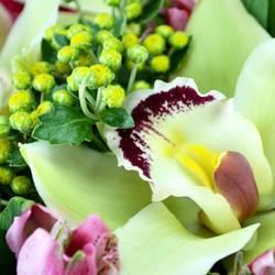 лепестки орхидей и альстромерии.jpeg